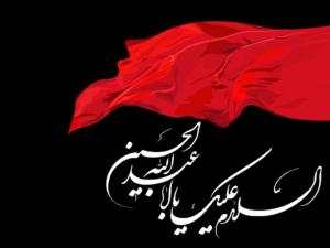 MAJLIS-E-SHAHADAT TIFLAAN-E-HAZRAT MUSLIM BIN AQEEL (as)